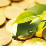 Stratégies environnementales : les vraies raisons de l'engagement